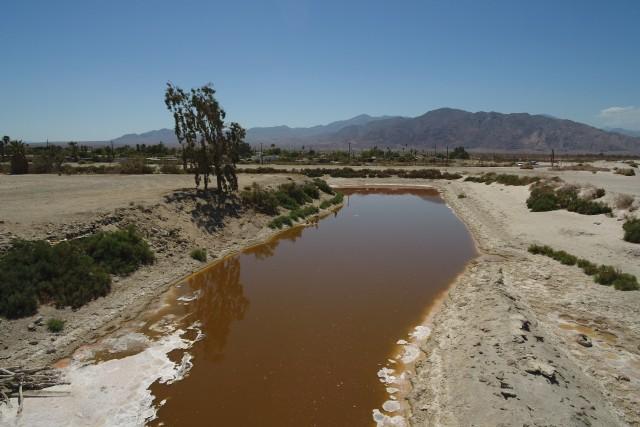 Salton Sea Beach and Desert Shores, California