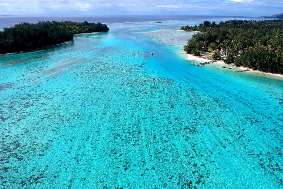 Lagoon of Haapiti, Moorea island