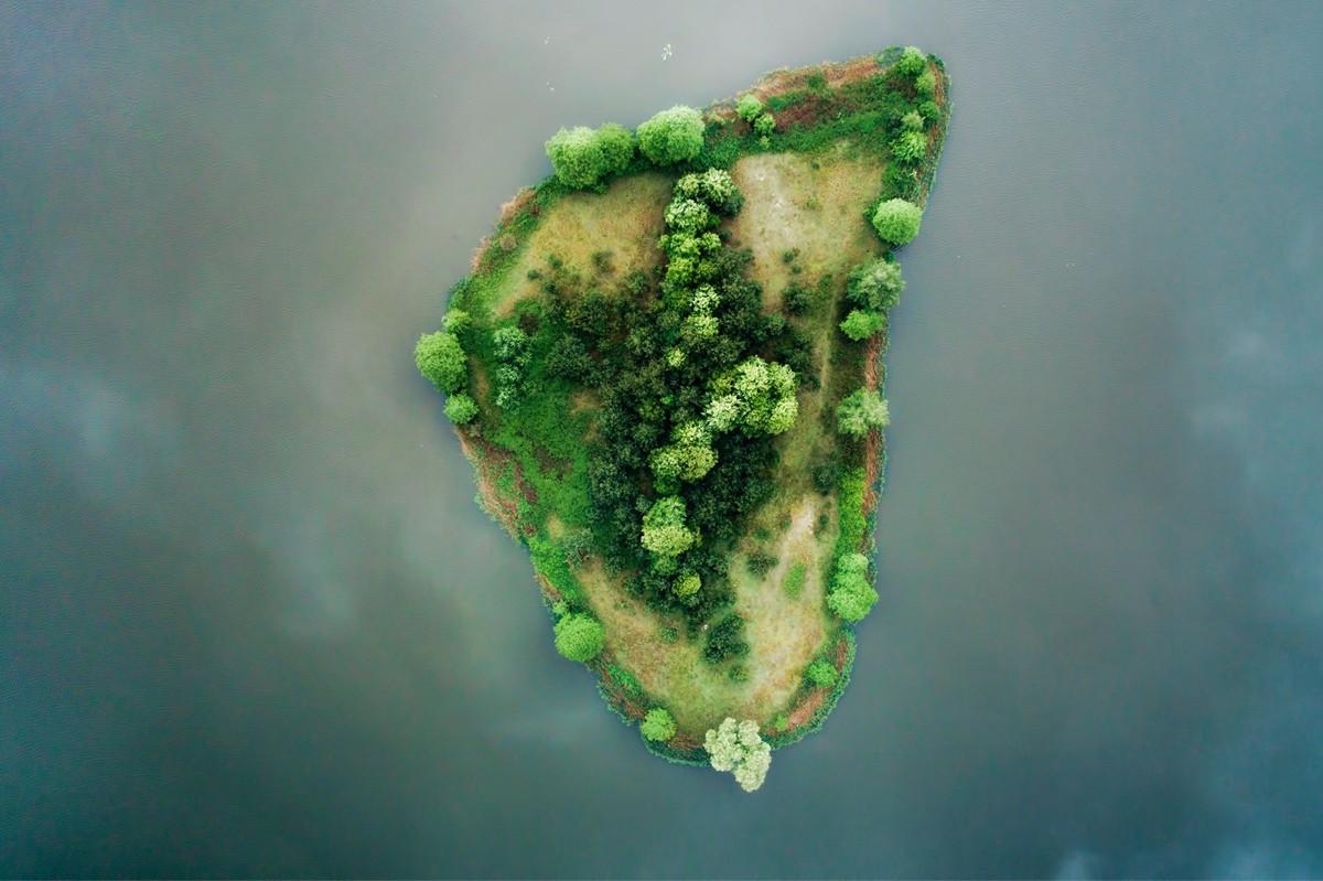 Island in a Lake