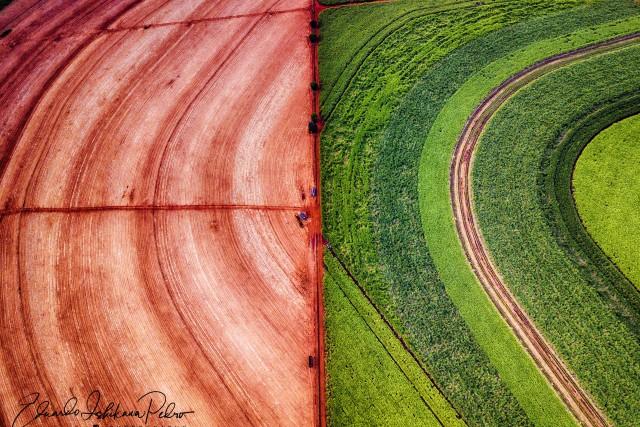 Same Place, Different Worlds, Different Realities! Sugarcane Harvest @ Cravinhos (SP), Brazil