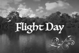 Flight Day in 1920