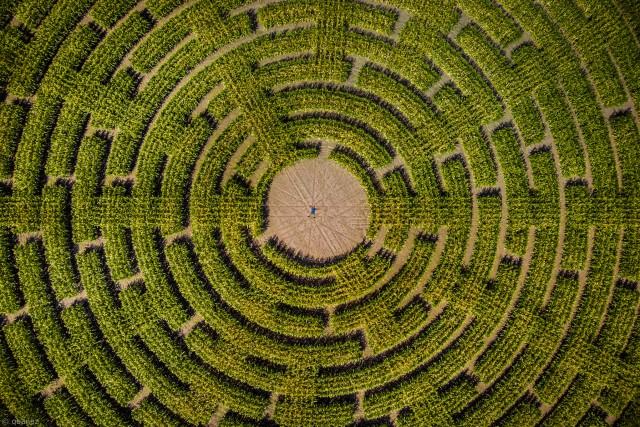 Self-portrait in labyrinth