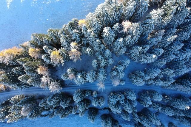 fall or winter in Trentino