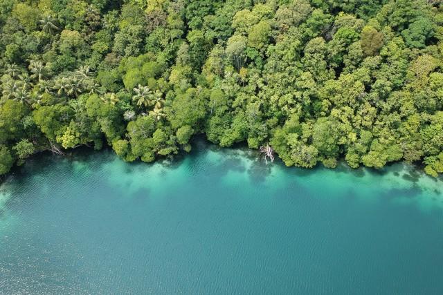 Kakaban Island, Kalimantan, Indonesia