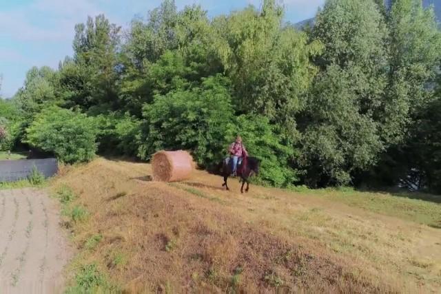 cavalli e droni
