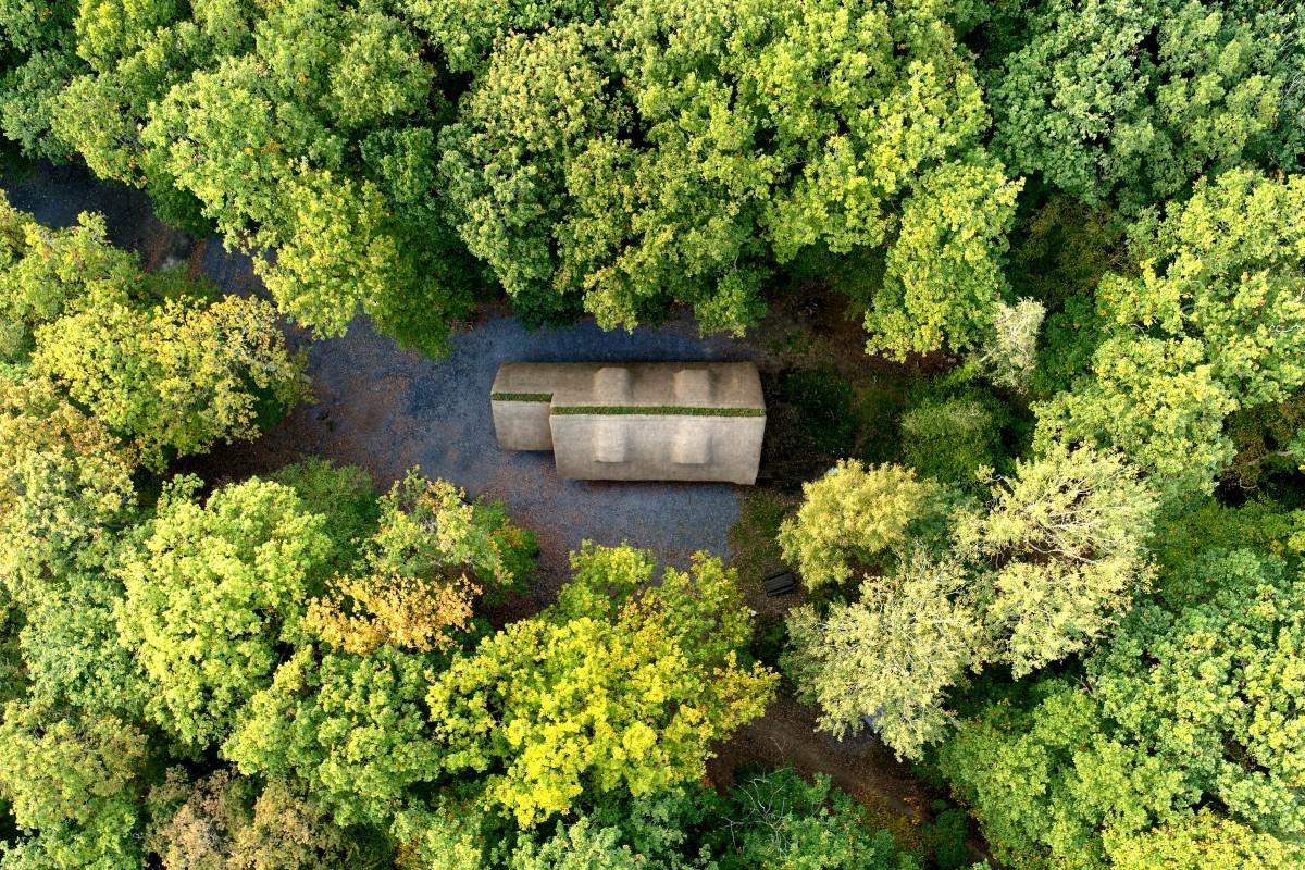 Chaumière dans la forêt.