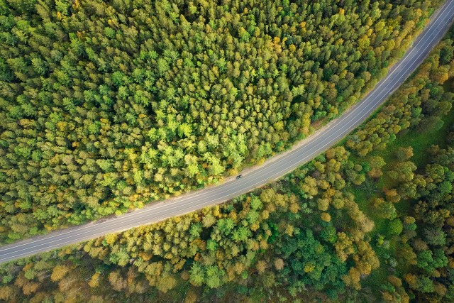 Road on Southern Ural