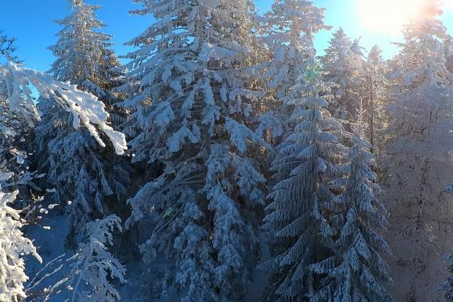 Snow in light