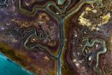 Marshland of Venice Lagoon