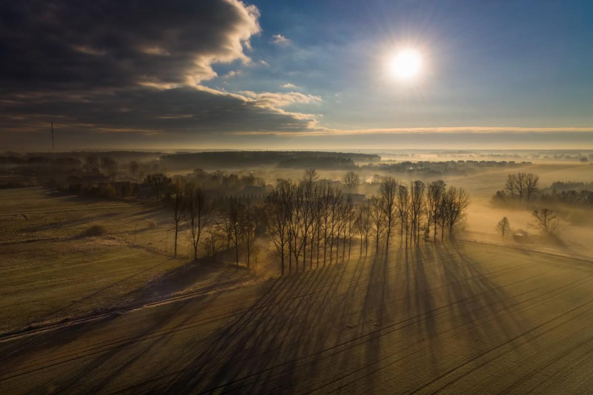 A frosty morning, Krzeczyn Wielki, Poland
