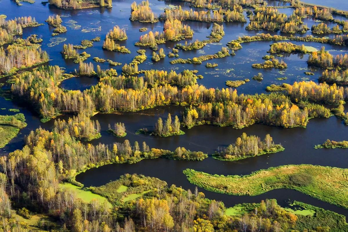 Neiva River