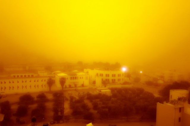 The yellow day