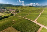 """En route"" for the Alsace Wine Route"