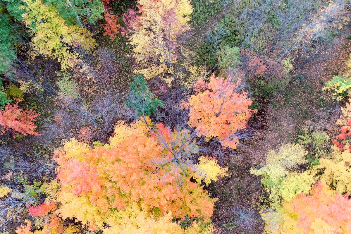 Seasons in Quebec, Canada