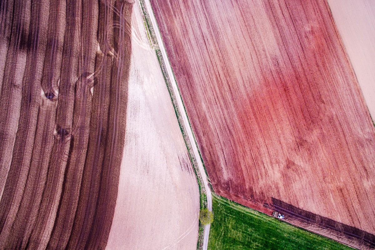 Farmers Art