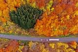 Miniatur Landscape in autumn