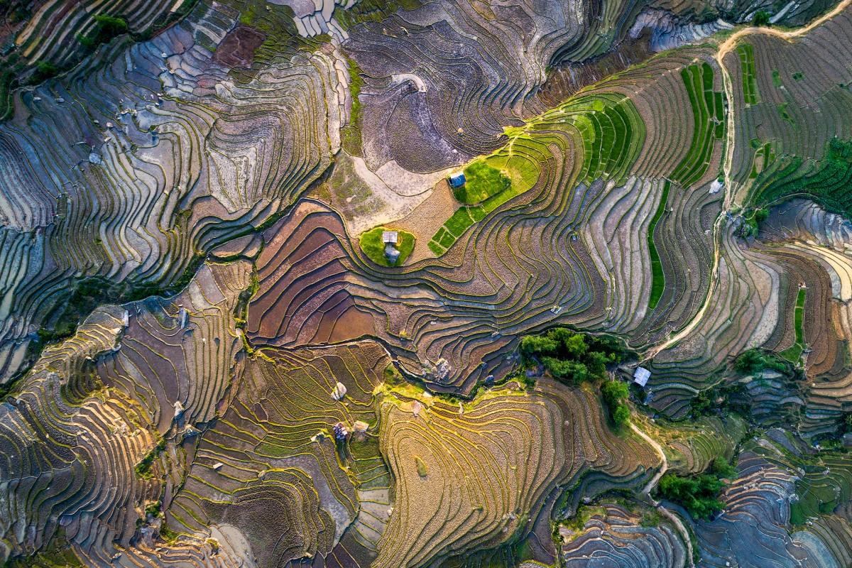 Rice terrace in waterfall season