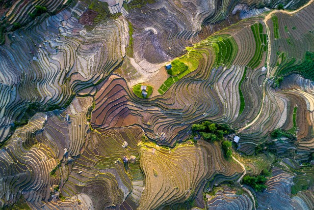Rice terrace in waterfall season