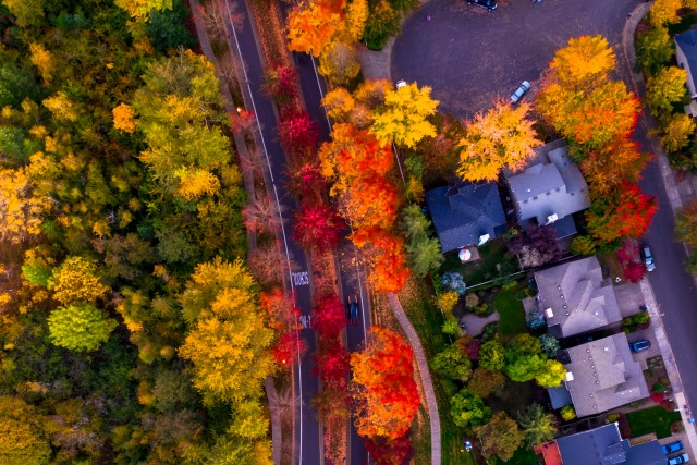Birds Eye Over Fall Neighborhood