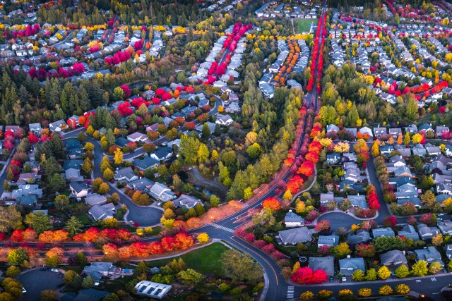 Colorful Roads of Autumn