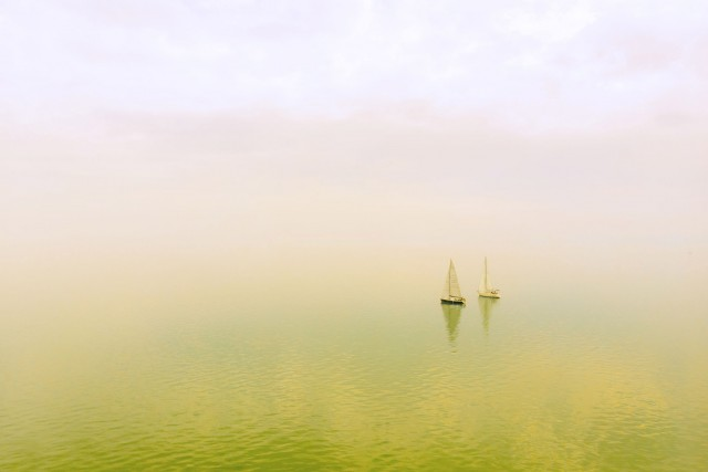 Foggy sailboats