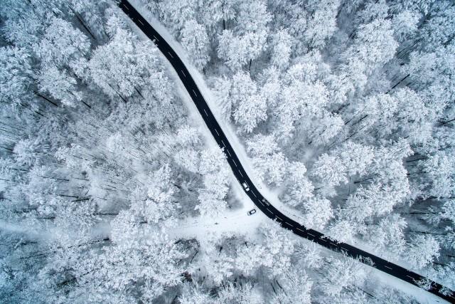 White winter fairy tale