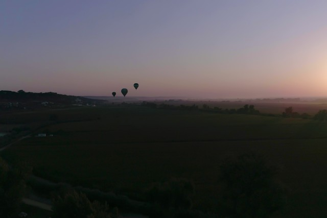 Globos al amanecer