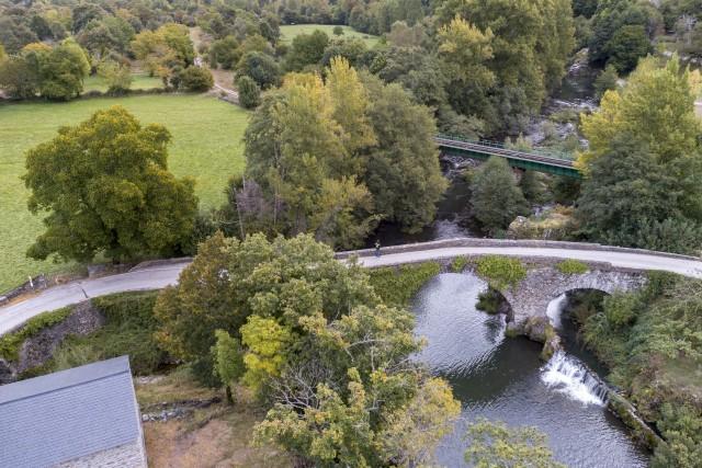 Puentes Leon