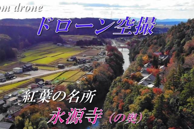 """Scenic spot for autumn leaves """"Eigenji Temple"""""""