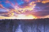 Sonnenaufgang im Winterwald