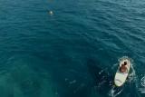 Tramuntana Drone: Paddlesurfing