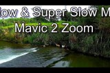 Slow-Motion Video with Mavic 2 Zoom – Dogs fishing, Birds flying and Fish jumping