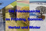 The Friedenseiche in the 4 Seasons