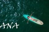 BLUEISH SURFER