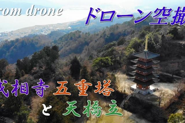 Five-story pagoda , Japan