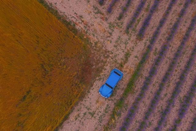 2cv drone coin de lavande