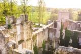 Château de Mursay en ruine