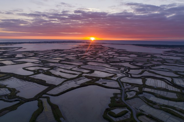 Sunset on the salt marshes in Guerande, France