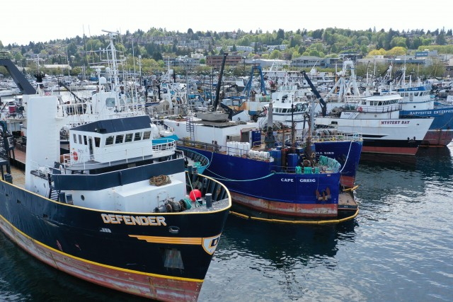 Fishing fleet