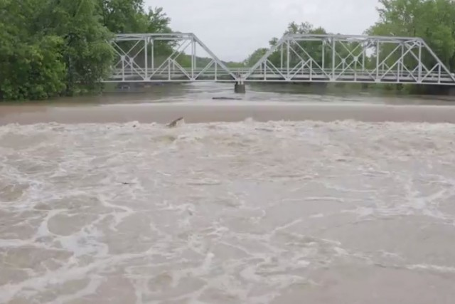 DRONE VIDEO: See the fast-rising Finley River in Ozark, Mo. – KY3