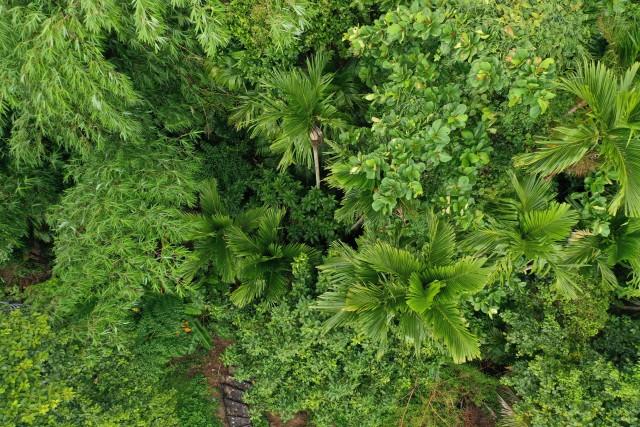 Koh Sriboya Island in June
