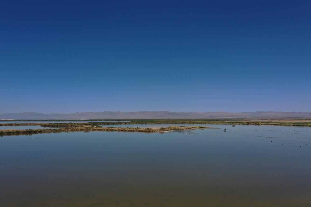 Salton Sea, July 2019