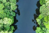 River in Brazilian Rain Forest