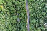Rain forest – Brazil