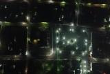 Parque José marías delgado, noche, chalchuapa, santa ana, el salvador.