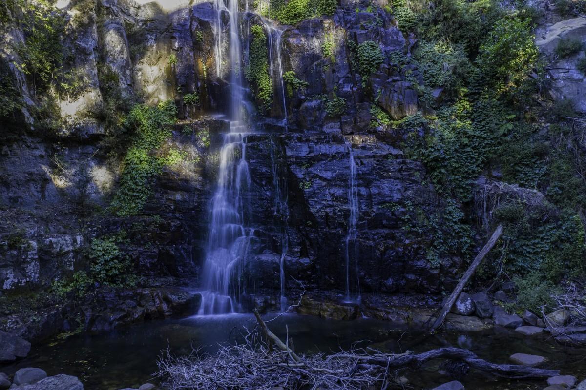 Minnamurra Rainforest, New South Wales, Australia, Jorg from Aussieskys