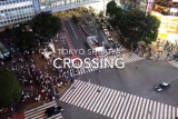 Shibuya crossing, the busiest in the world