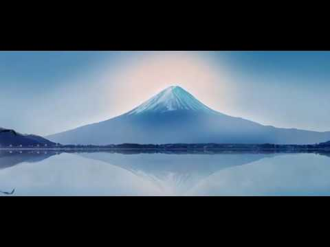 Tokyo Drone Video Tour | Expedia